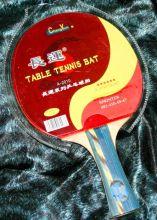Ракетка для настольного тенниса Sprinter Professional (6 звезд)
